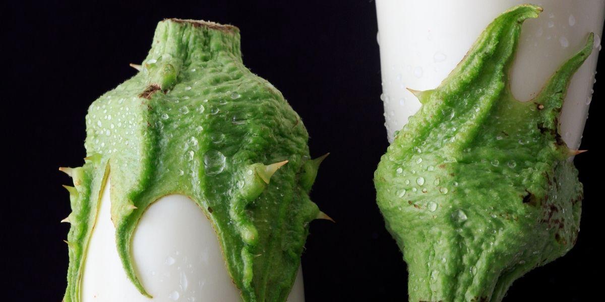 Recette des pavés d'aubergines blanches