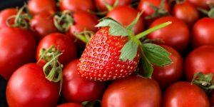 Recette des tomates farcies aux fraises